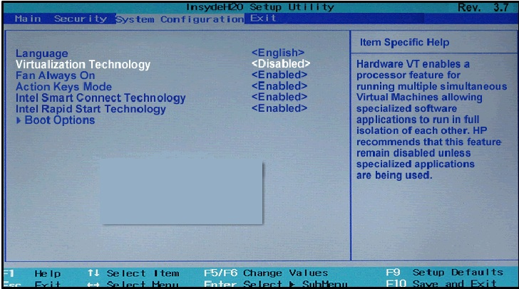 intel virtualization technology  BIOS InsydeH20